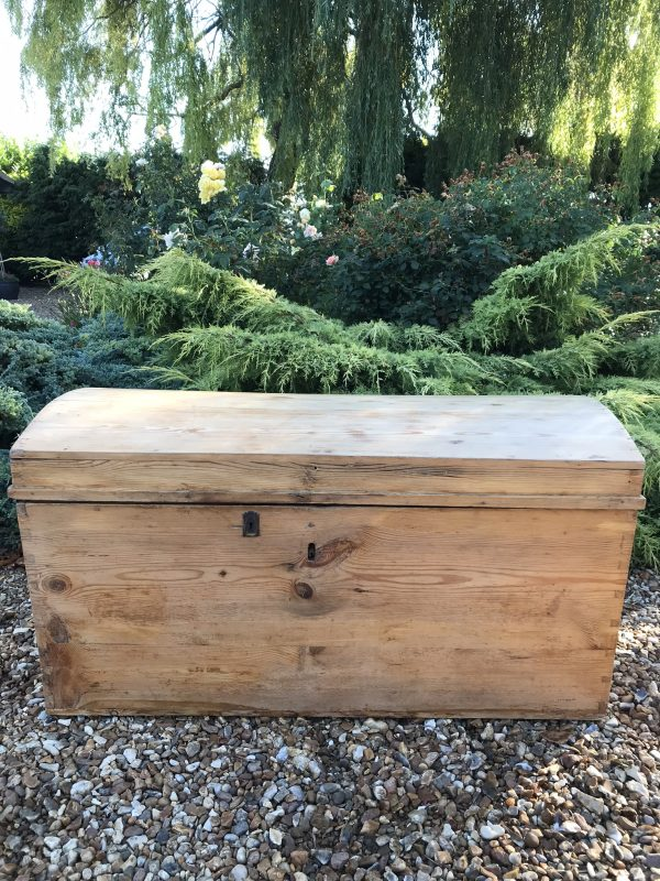 Antique Dome Top Pine Trunk – Sold
