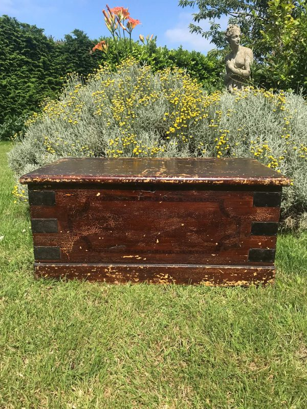 Victorian Stained and Painted Pine Trunk – Sold
